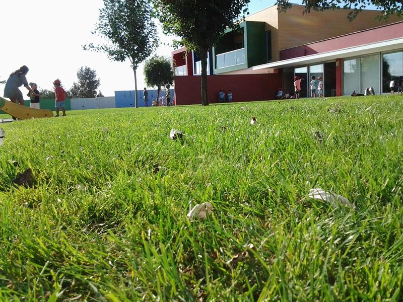 Jardim do Fraldinhas | O NOSSO JARDIM